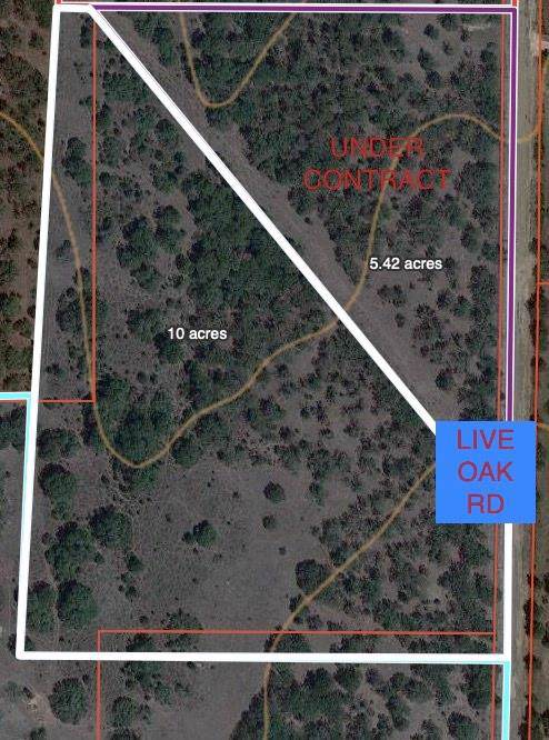 TBD 8 Live Oak Road, Santo, TX 76472 (MLS #14267050) :: The Mauelshagen Group