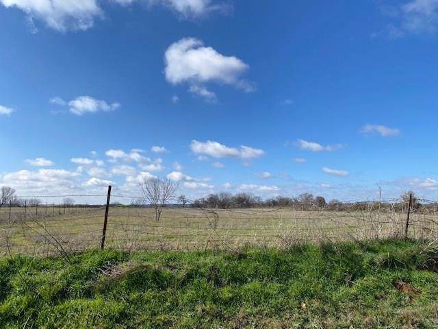 0000 Mitchell Bend Court, Granbury, TX 76048 (MLS #14267209) :: Hargrove Realty Group
