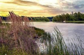 14A Waterstone Estates Drive, Mckinney, TX 75071 (MLS #14268061) :: HergGroup Dallas-Fort Worth
