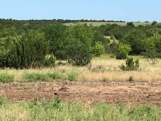 TBD Cr 119, Hico, TX 76457 (MLS #14274791) :: Potts Realty Group