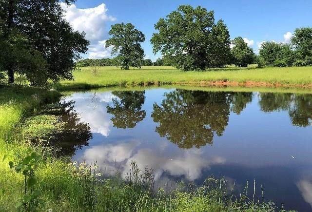 360 County Rd 140, Streetman, TX 75859 (MLS #14281060) :: The Kimberly Davis Group