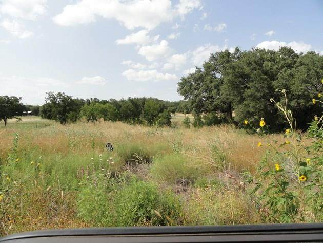 Lot 19 Britney Lane, Lake Brownwood, TX 76801 (MLS #14281372) :: The Chad Smith Team