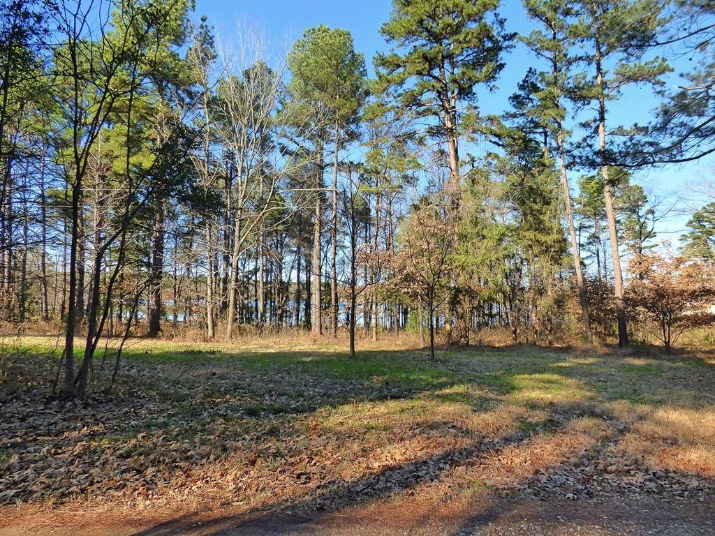TBD Cr 2735 (2.5 Acre Lot) - Photo 1