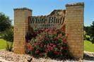 4012 Whitecrest Drive - Photo 3