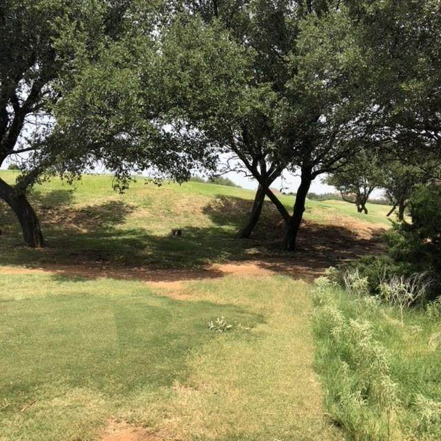 L87 L88 Colonial Drive, Possum Kingdom Lake, TX 76449 (MLS #14293882) :: The Daniel Team