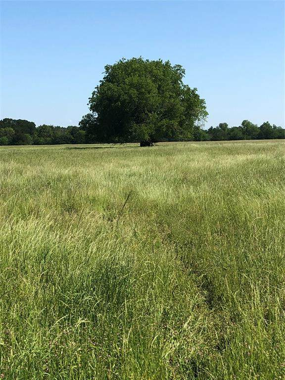 580-640 Farm Market 816, Wolfe City, TX 75496 (MLS #14304458) :: Real Estate By Design