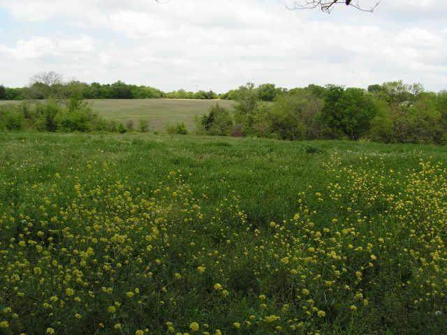 745 E Belt Line Road, Desoto, TX 75115 (MLS #14306302) :: Real Estate By Design