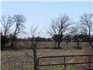 000 Kaitlynn Court, Caddo Mills, TX 75135 (MLS #14307648) :: Tenesha Lusk Realty Group