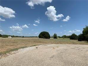 33008 Woodcrest Drive, Whitney, TX 76692 (MLS #14314346) :: RE/MAX Landmark