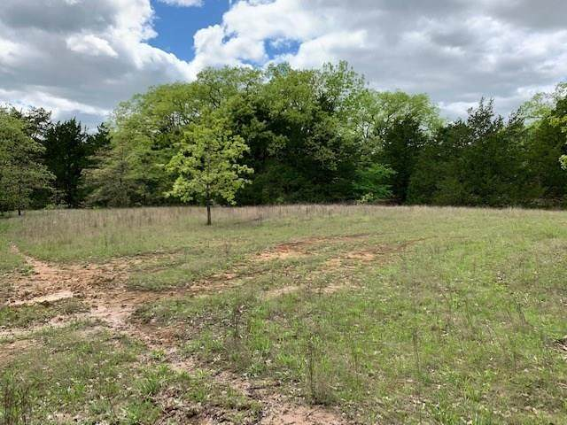 TBD Co Road 3812, Wills Point, TX 75169 (MLS #14318151) :: All Cities USA Realty