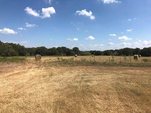 145 Serenity Road, Paradise, TX 76073 (MLS #14328390) :: The Juli Black Team