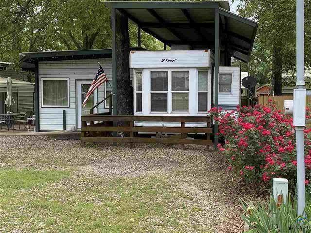 6435 N Fm17 #298, Yantis, TX 75497 (MLS #14336279) :: Ann Carr Real Estate