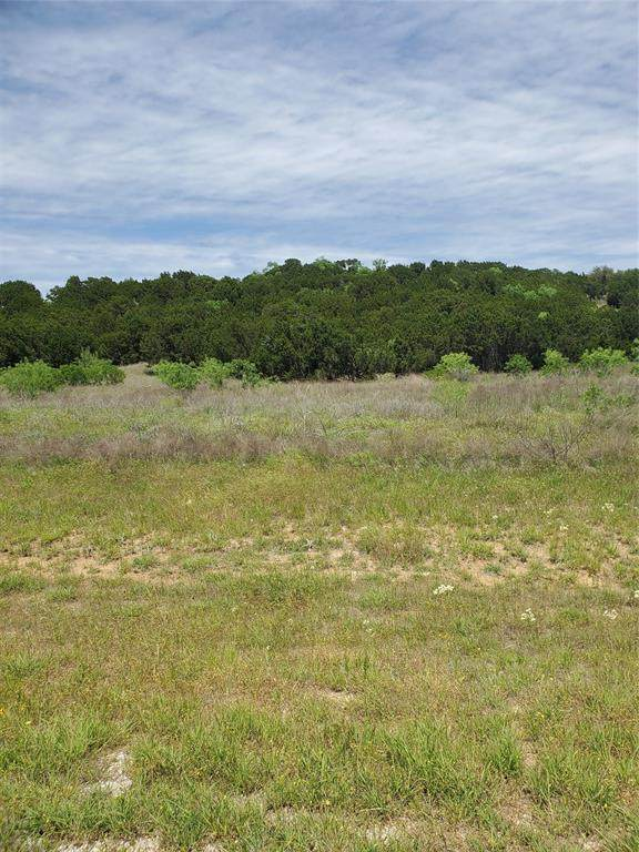 Lot 219 Fire Wheel Drive, Possum Kingdom Lake, TX 76449 (MLS #14344817) :: Frankie Arthur Real Estate