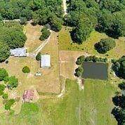 458 County Road 3163, Quitman, TX 75783 (MLS #14349453) :: Robbins Real Estate Group