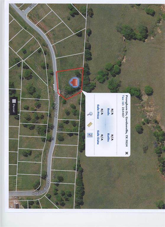 Lot 61 Pronghorn Drive, Gordonville, TX 76245 (MLS #14353305) :: The Hornburg Real Estate Group
