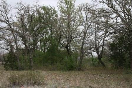 E-11 Stagecoach Trail, Gordon, TX 76453 (MLS #14356276) :: The Daniel Team