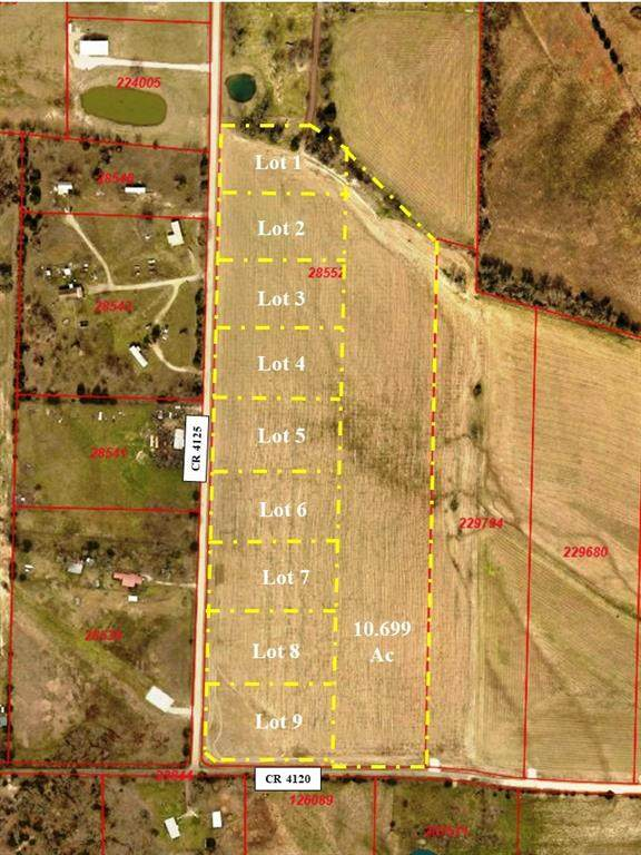 Lot 2 Cr 4125, Campbell, TX 75422 (MLS #14367102) :: Trinity Premier Properties