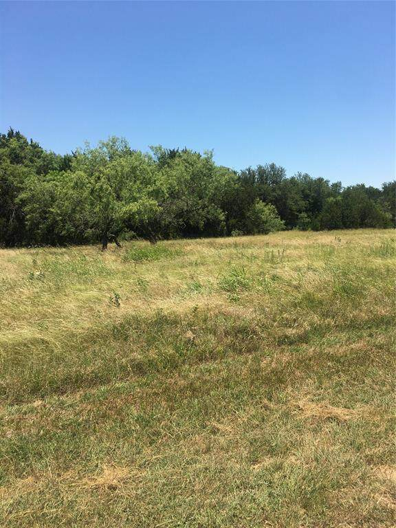 20008 Misty Valley Circle, Whitney, TX 76692 (MLS #14367622) :: Team Hodnett