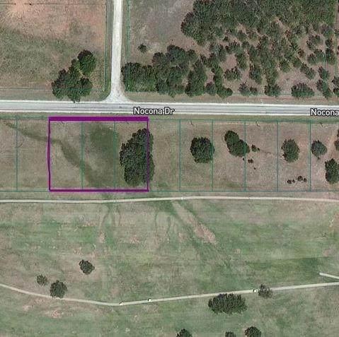 155 Nocona Drive, Nocona, TX 76255 (MLS #14373056) :: Potts Realty Group