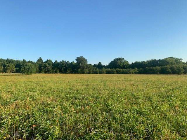 0000 0 Vz County Road 2901, Eustace, TX 75147 (MLS #14374762) :: Robbins Real Estate Group