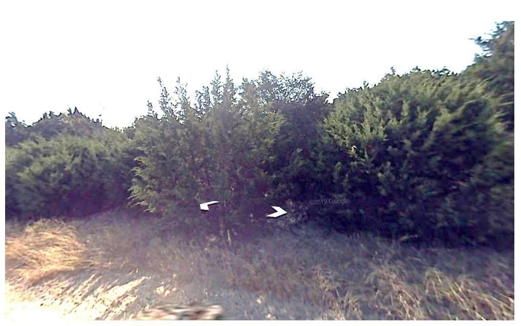 3 Hereford Drive - Photo 1
