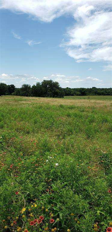 0 County Road 304, Comanche, TX 76442 (MLS #14382816) :: Robbins Real Estate Group