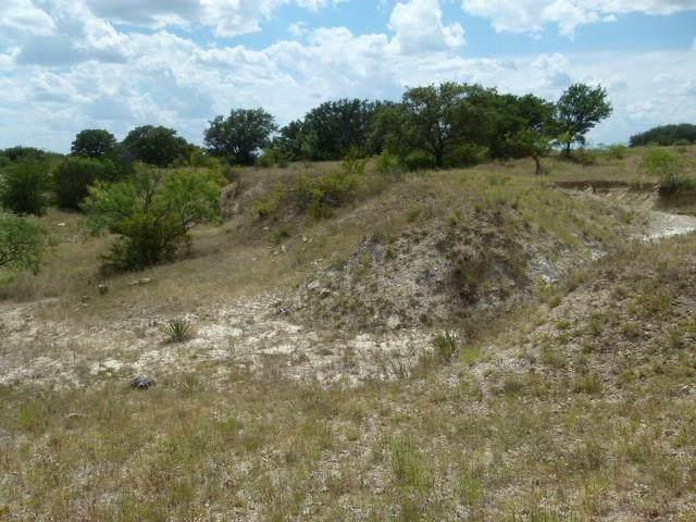 2645 County Road 294 N, Early, TX 76802 (MLS #14392071) :: RE/MAX Landmark