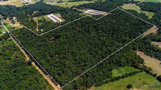 TBD SE County Road 4340, Scroggins, TX 75480 (MLS #14396248) :: Lyn L. Thomas Real Estate | Keller Williams Allen