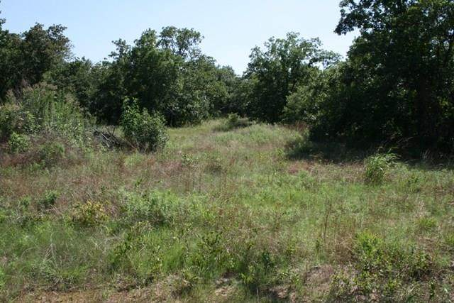 16R Julie Drive, Mineral Wells, TX 76067 (MLS #14397599) :: The Hornburg Real Estate Group