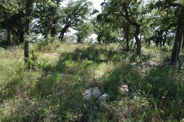 32R Lori Drive, Mineral Wells, TX 76067 (MLS #14397632) :: The Hornburg Real Estate Group