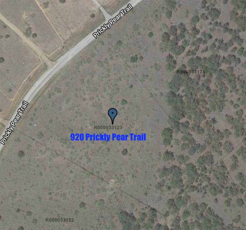 920 Prickly Pear Trail - Photo 1