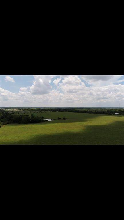 2511 2511, Wills Point, TX 75169 (MLS #14408602) :: The Heyl Group at Keller Williams