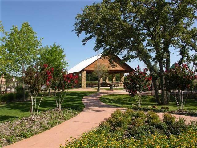 9204 White Birch Trail, Lantana, TX 76226 (MLS #14409987) :: Team Hodnett
