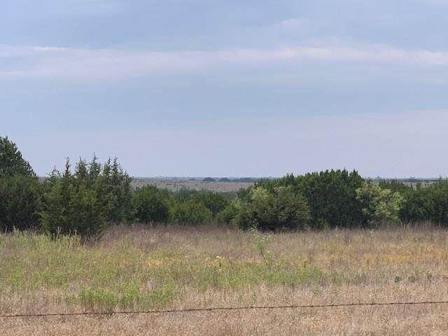 TBD Cr 234, Hico, TX 76457 (MLS #14415825) :: The Kimberly Davis Group