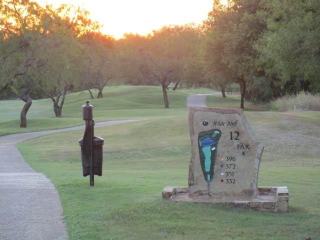 34061 Stonewood Loop, Whitney, TX 76692 (MLS #14415991) :: The Mauelshagen Group