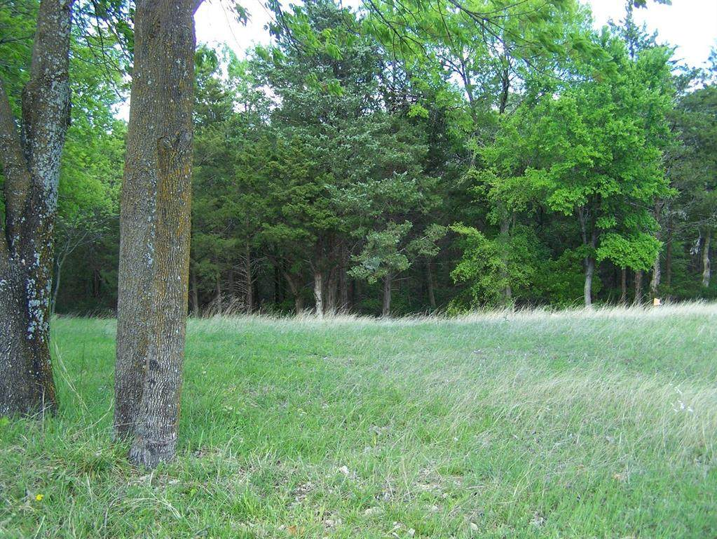 TBD Fairway Loop Drive - Photo 1