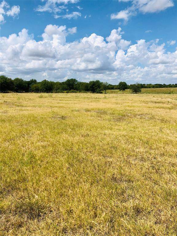 TBD 1B Fm 2959, Hillsboro, TX 76645 (MLS #14418599) :: The Hornburg Real Estate Group
