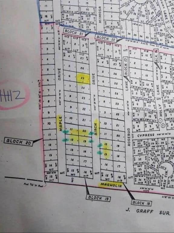 TBD Birch Drive 12-13, Murchison, TX 75778 (MLS #14420851) :: The Mitchell Group