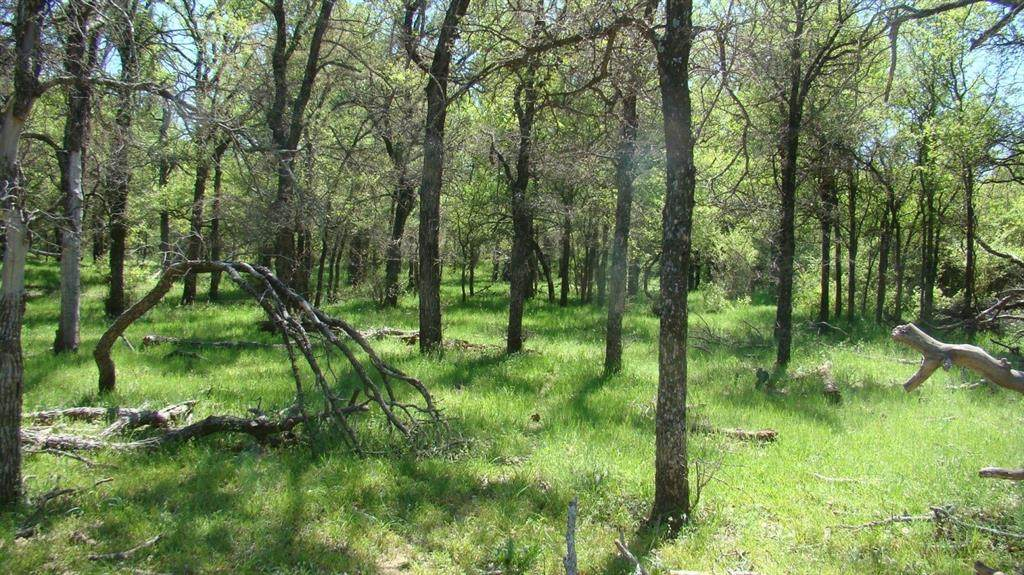 TBD Mx Ranch Road - Photo 1
