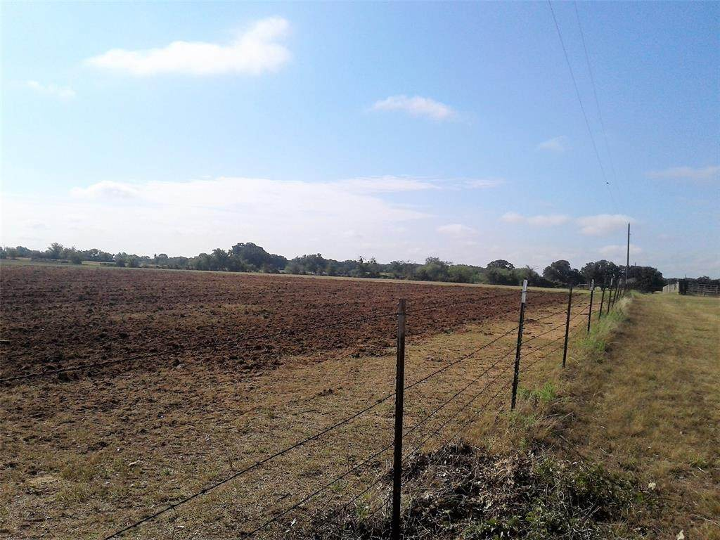 1009 County Road 235 - Photo 1