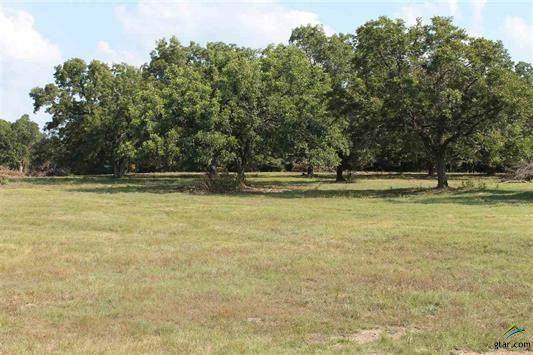 TBD Vz Cr 4607 Road, Ben Wheeler, TX 75754 (MLS #14436889) :: Justin Bassett Realty