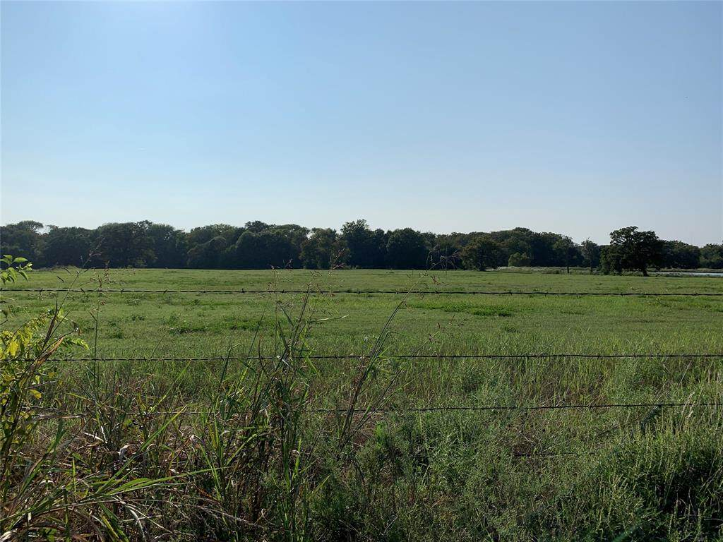 TBD County Road 1605 - Photo 1