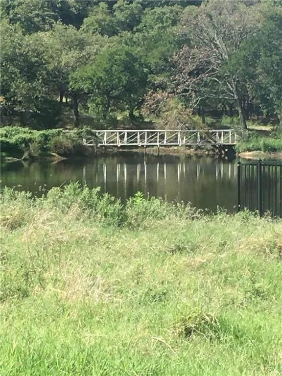 6700 Mountain Lake Parkway, Cross Roads, TX 76227 (MLS #14440177) :: Trinity Premier Properties