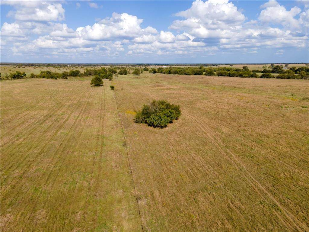 16.81Ac County Road 1610 - Photo 1