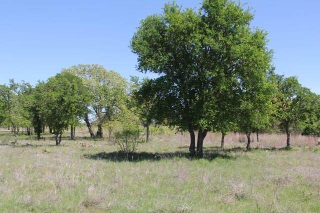 63 a Feather Bay Boulevard, Brownwood, TX 76801 (MLS #14450355) :: Feller Realty