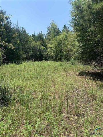 0000 County Road 3400, Hawkins, TX 75765 (MLS #14452570) :: All Cities USA Realty