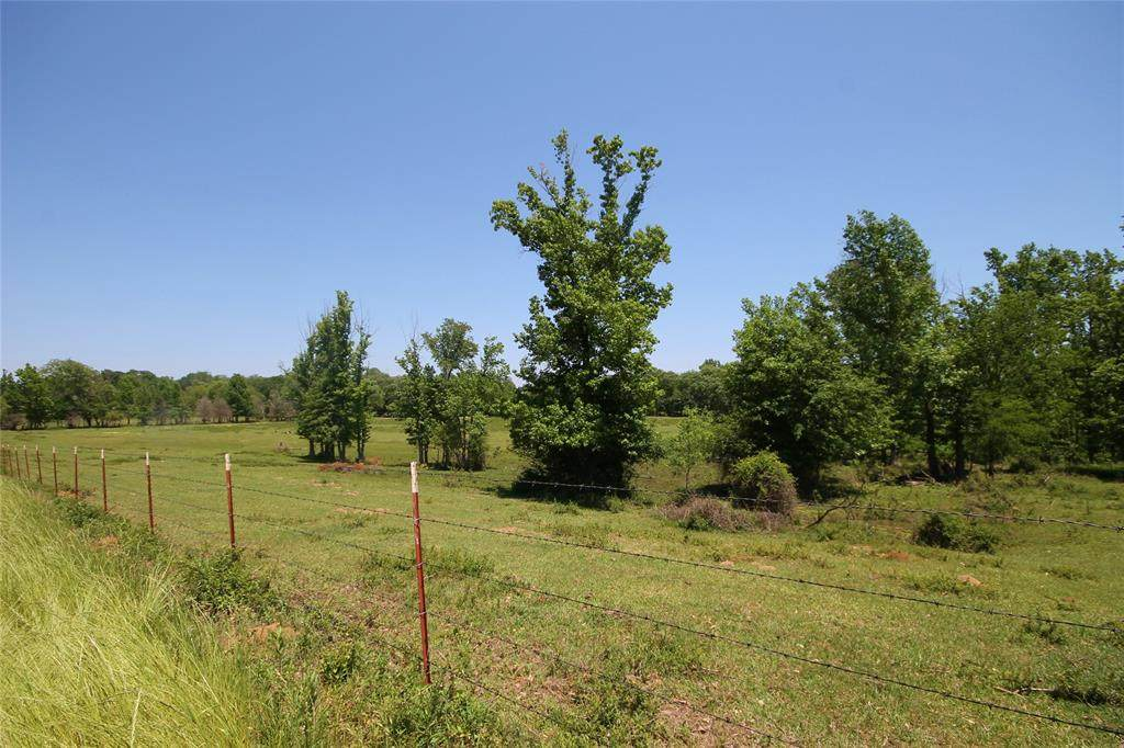 14233 County Road 474 - Photo 1