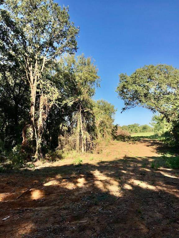 0000 New Hope Road Road, Aubrey, TX 76227 (MLS #14455046) :: The Tierny Jordan Network
