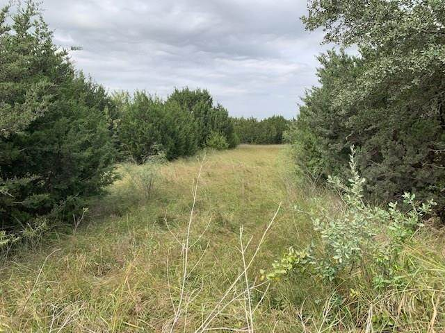 TBD Cr 233, Hico, TX 76457 (MLS #14455082) :: The Kimberly Davis Group
