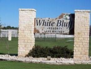 43130 Mountain Sage Drive, Whitney, TX 76692 (MLS #14459198) :: The Juli Black Team